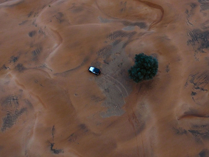 Drone photo of an off-road vehicle near a trea on a desert in the united arab emirates.