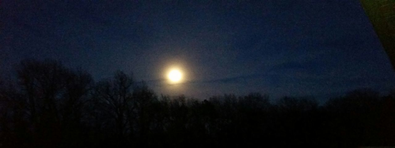 Missouri Ozarks United States Blue Moon 2018 Hazey Moon Night Nature Astronomy Tree Outdoors Tranquility Space Sky Beauty In Nature Scenics No People