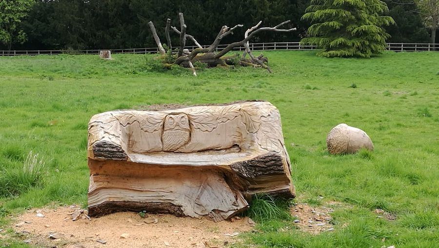 Sculpture on field against trees