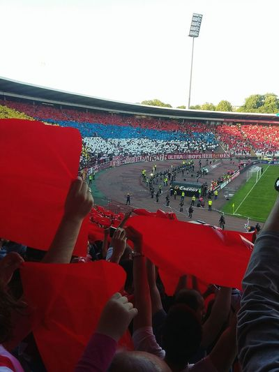 Sitting Red Vibrant Color Young Adult Multi Colored Serbia Flag Football Redstar Belgrade Stadium Life Sports Redstarbelgrade Fans Game People Watching Atmosphere AdrenalineRush All As One