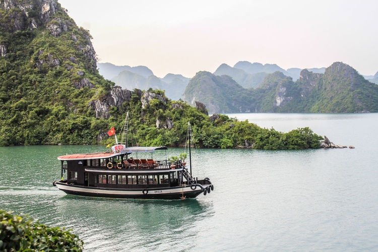 Cruise in Halong Bay Halong Bay Vietnam Halong Bay  Halong Bay Cruise Vietnam Water Nautical Vessel Mountain Beauty In Nature Scenics - Nature Tree Waterfront Plant Tranquility Tranquil Scene Mode Of Transportation Transportation Nature River Sky Day Non-urban Scene Idyllic Mountain Range Outdoors Passenger Craft