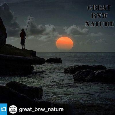 Repost from @great_bnw_nature with @repostapp --- Felicidades @duppykankera Increíble imagen Congrats @duppykankera Nice shot ... ➖➖➖➖➖➖➖➖➖➖➖➖➖➖➖➖➖➖➖➖➖➖➖➖➖➖➖➖➖➖➖➖➖➖➖➖➖➖➖➖ Captura seleccionada por: Adm: @dragondeco ➖➖➖➖➖➖➖➖➖➖➖➖➖➖➖➖➖➖➖➖➖➖➖➖➖➖➖➖➖➖➖➖➖➖➖➖➖➖➖➖ Sigue @great_bnw_nature Great_bnw_nature Follow @great_bnw_nature Great_bnw_nature ➖➖➖➖➖➖➖➖➖➖➖➖➖➖➖➖➖➖➖➖➖➖➖➖➖➖➖➖➖➖➖➖➖➖➖➖➖➖➖➖ También puedes seguir: You can also follow: .. @Great_Captures @Great_Captures_Sun @Great_Captures_Flowers @Great_Captures_Splash @Great_Captures_Hdr @Great_Captures_Sensual @Great_Captures_BNW @Great_Captures_City @Great_Captures_Macro @Great_Captures_Nature @Great_Captures_People @Great_Captures_Edits @Great_Captures_Minimal @Great_Captures_Children @Great_Captures_Brasil @Great_Captures_Italia @Great_Captures_Australia @Great_Bnw_Nature Gracias a todos! Thanks all!