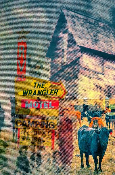 The Wrangler Settlers Colorful Prairie Illustration Digital Collage Homesteaders Cow Wrangler Ancestors Old West  Abstract Photoexpressionism The Innovator