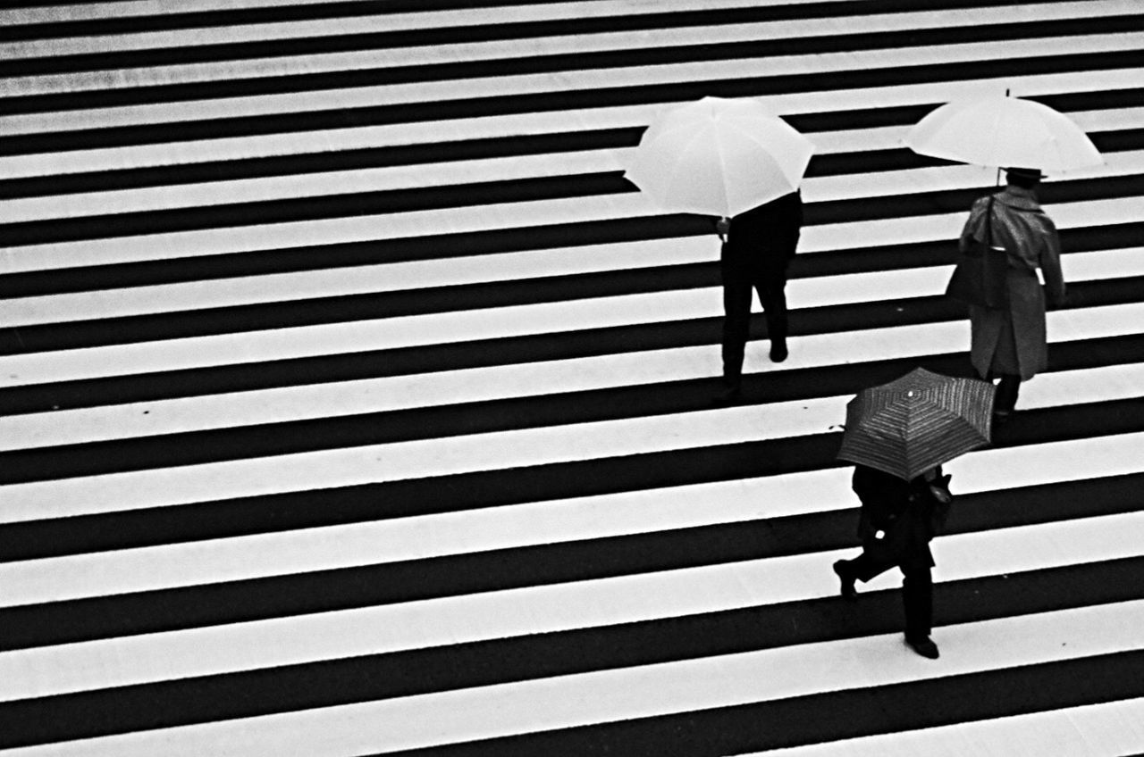 walking, zebra crossing, striped, real people, two people, full length, crossing, protection, men, outdoors, high angle view, women, rear view, city life, lifestyles, day, city, togetherness, pedestrian, adult, people, adults only
