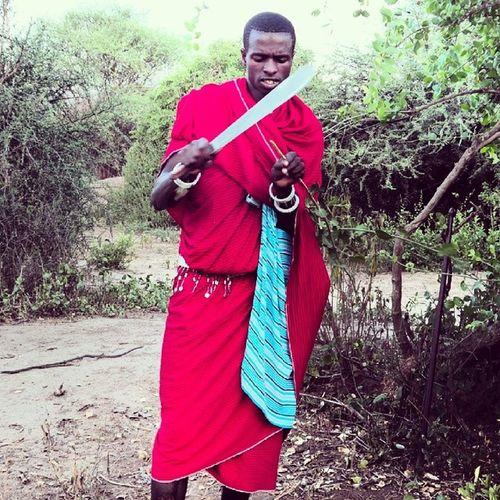 Masaai Tanagire Africa Tanzania