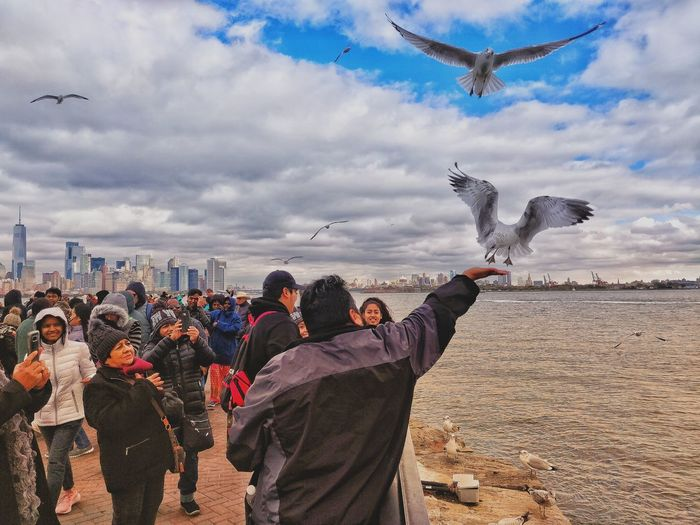 Seagull Liberty