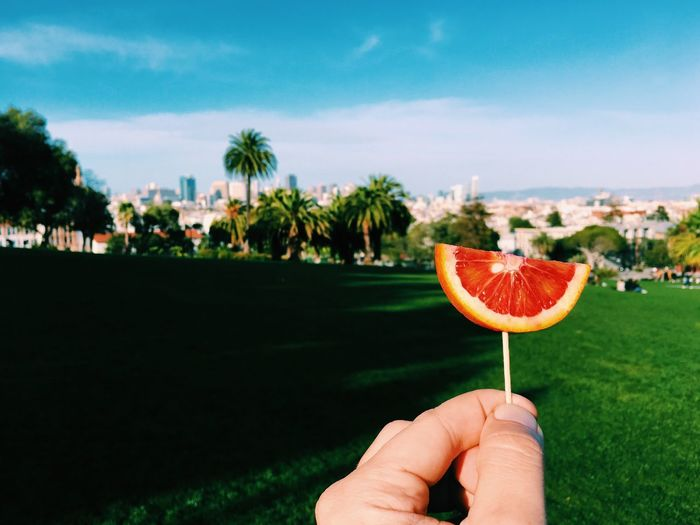 Cropped hand holding blood orange on grassy field against sky