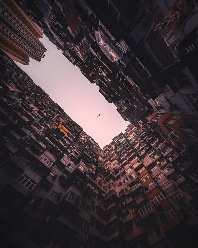 uncaged. High Resolution Abstract Looking Up Bladerunner Futuristic Abstract Art Ghost In The Shell Cities Future Retro Bladerunnerinspired Architecture Sunset Birds Hawk Low Angle View No People Sky Skyscraper Architecture Outdoors Cityscape Adventures In The City The Traveler - 2018 EyeEm Awards The Street Photographer - 2018 EyeEm Awards The Architect - 2018 EyeEm Awards