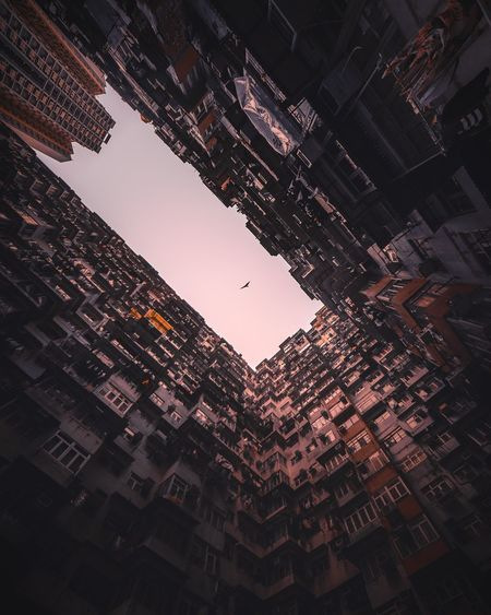 uncaged. High Resolution Abstract Looking Up Bladerunner Futuristic Abstract Art Ghost In The Shell Cities Future Retro Bladerunnerinspired Architecture Sunset Birds Hawk Low Angle View No People Sky Skyscraper Architecture Outdoors Cityscape Adventures In The City