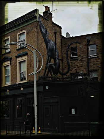 Peckham totally Shoreditch trendy nowadays a natty rat has arrived on one of our local pubs The Victoria! Street Art London Hotel Eye4photography  Peckham Peckham Rye Peckham South London