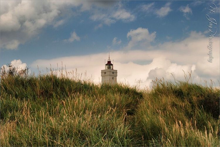 Lighthouse Blåvand Denmark Landscape Nature Dunes Eye4photography  Summer EyeEm Masterclass Denmark 🇩🇰