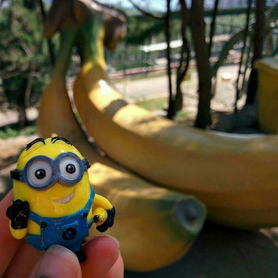 Hello Minion  adventures Banana !!! Dave's Adventures