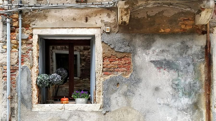 City walls DoorArt Is Everywhere Architecture Built Structure WindowCityscape Nature Detail Flower Building Exterior Day No People Doorway Outdoors Architecture