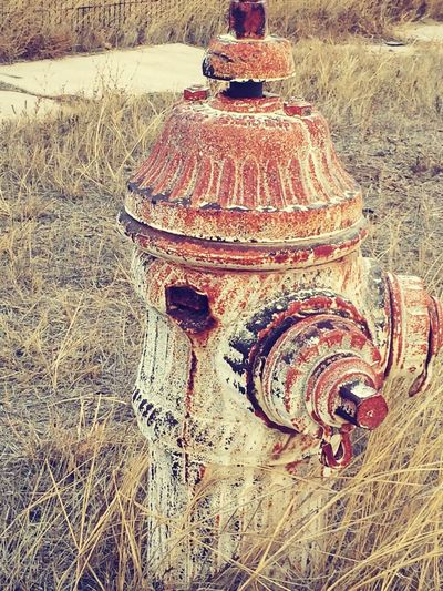 Grass Rusty Close-up Outdoors Hydrant