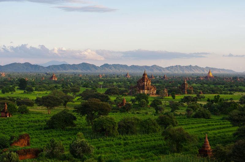 Pagodas on field against sky