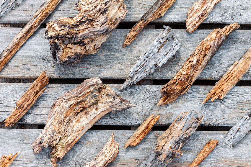 Full Frame Wood - Material No People Outdoors Backgrounds High Angle View Close-up Wood Wood Pieces Organized Neatly Rotten Rotten Wood Worn Out Weathered Beach Group Of Objects The Week On EyeEm