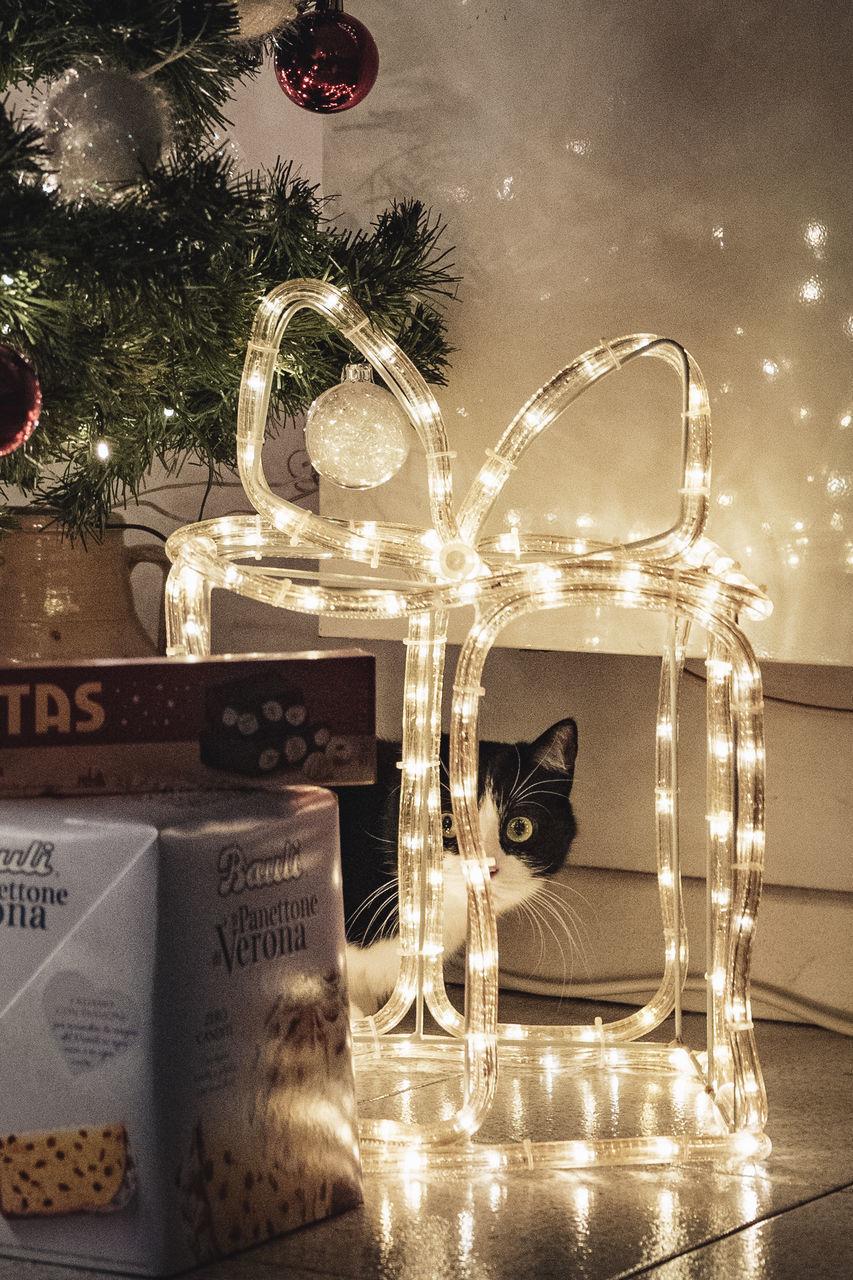 ILLUMINATED CHRISTMAS TREE ON TABLE AGAINST WALL