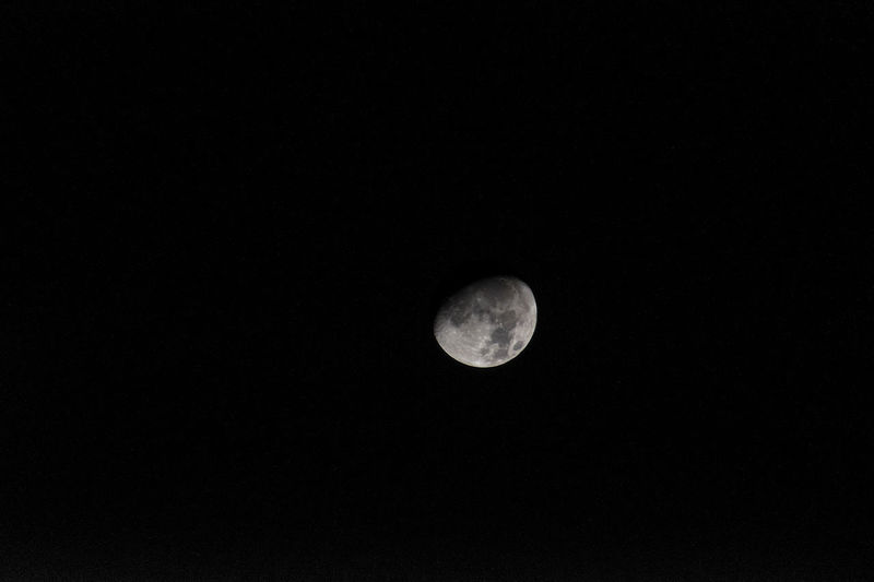Moon seen at Ourém - Portugal Moon Astronomy Beauty In Nature Half Moon Low Angle View Moon Moon Surface Nature Night No People Outdoors Planetary Moon Scenics Sky Space Space Exploration Tranquility