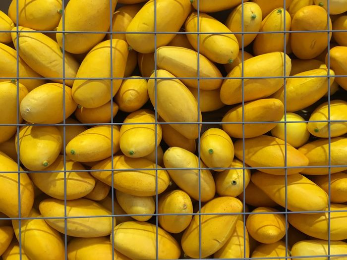 Close-up of mangos in rack