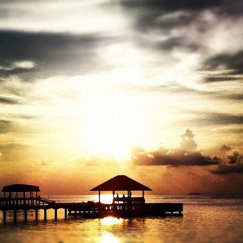 Hilton irufushi maldives Hilton Hotel Nature_collection
