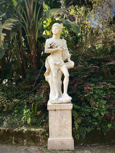 Statue Portugal Portuguese Marble Stone Statues Statue Sculpture Human Representation Male Likeness Art And Craft No People Outdoors Day Plant Flower Nature Tree