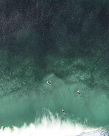 High angle view of surfers in sea surrounded by the school of fish