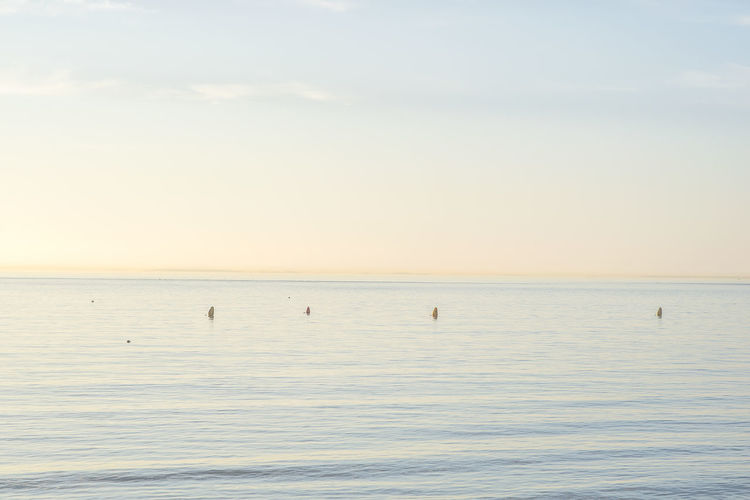 Beach Beauty In Nature Blue Day Horizon Horizon Over Water Korea Landscape Nature No People Outdoors Scenics Sea Sky Sunset Tranquil Scene Tranquility Travel Destinations Water