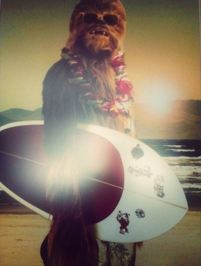 Chewbacca Chewie Surfing Summer