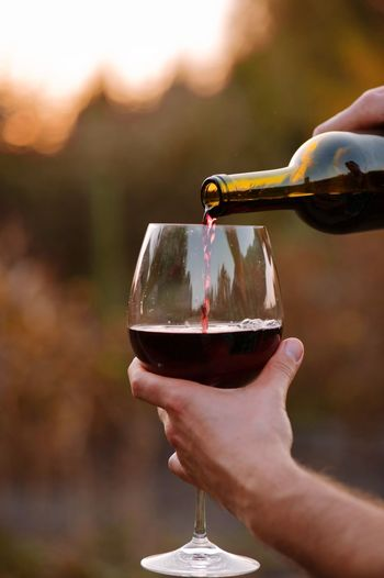 testing a glass of red wine at sunset Human Hand Hand Human Body Part Holding One Person Drink Refreshment Body Part Food And Drink Focus On Foreground Wineglass Alcohol Wine Glass Unrecognizable Person Adult Red Wine Finger Close-up Outdoors