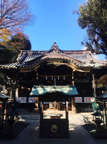 Japanese Temple Japan Photography Faithful Spirituality Temple Architecture Temple Tree Day Built Structure Outdoors Architecture Clear Sky Blue No People Carousel Sky