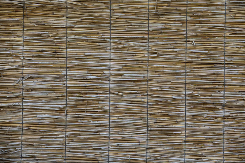 Bamboo fence background ASIA Asian  Japanese  Rattan Background Background Texture Backgrounds Bamboo Bamboo - Material Bamboo Background Bamboo Fence Cane Chinese Design Detail Material Orient Pattern Patterns Patterns & Textures Ratan Reed Texture Traditional Wooden