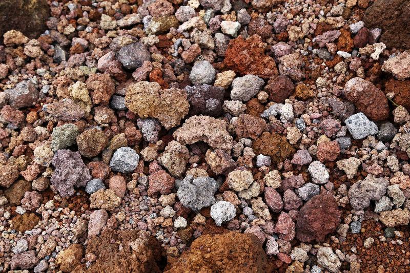 Close-up of rocks on land