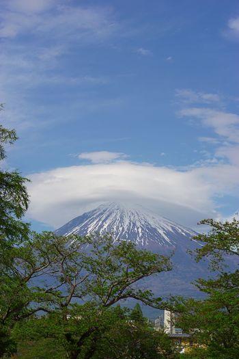 Sony α♡Love SONY SEL90M28G SONY ILCE-7M2 Fujiyama Mt.Fuji Sky Cloud - Sky Beauty In Nature Tree Nature Scenics - Nature Plant Mountain No People