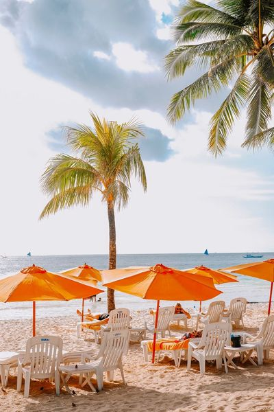 Beach side Beach Sand Sea Chair Palm Tree Tranquility Tranquil Scene Idyllic Vacations Tropical Climate Scenics Outdoor Chair Relaxation Nature Tourist Resort Beauty In Nature Horizon Over Water