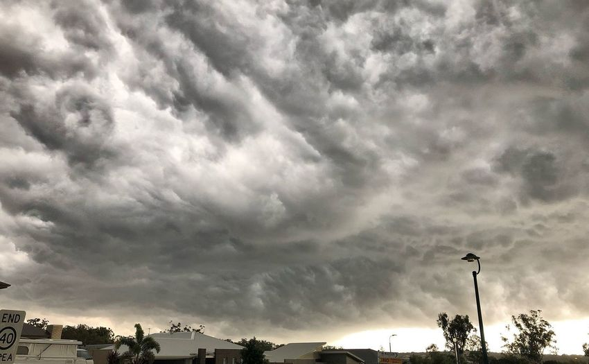 Wild weather for Christmas! Tropicalstorm Storm Cloud Stormy Weather Cloud - Sky Sky Low Angle View Tree Nature Beauty In Nature Plant Dramatic Sky Cloudscape