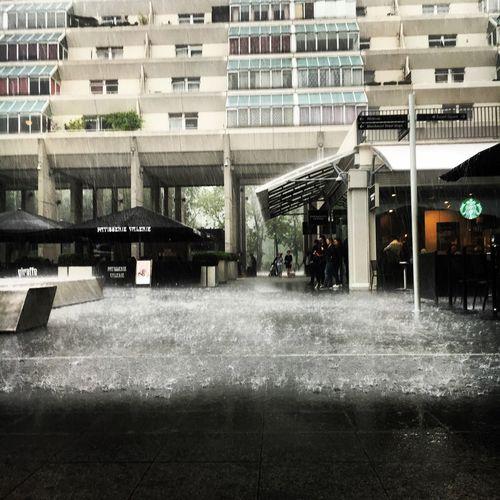 London June Rain Summer British Summertime Torrential Rain Wet Umbrella Brunswick