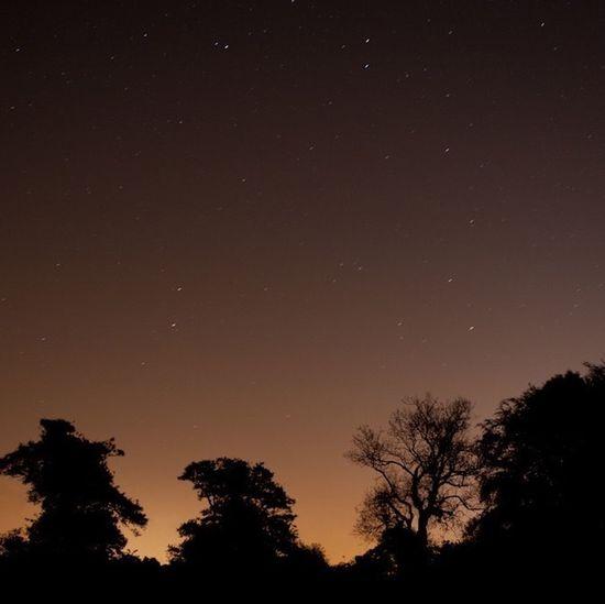 Nightphotography Stars Whenyouwishuponastar