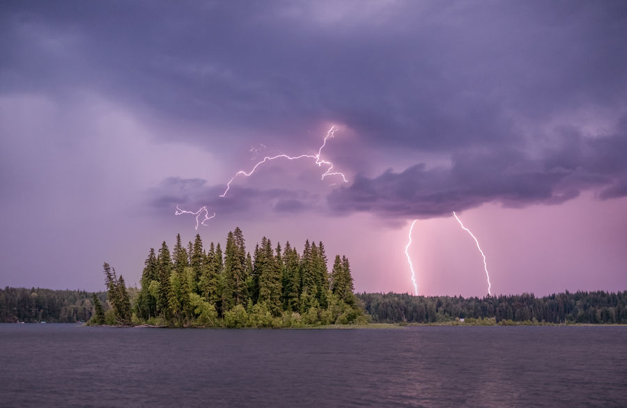 There was a severe lightning storm over Prince George in the distance. We had a beautiful display looking back towards it out at Ness Lake although we lost power for a couple of hours. Love Life, Love Photography British Columbia, Canada Beauty In Nature Cloud - Sky Dusk Forked Lightning Lake Lake View Lightning Nature Ness Lake No People Outdoors Plant Power Power In Nature Purple Scary Scenics - Nature Sky Storm Storm Cloud Thunderstorm Tree Water Waterfront