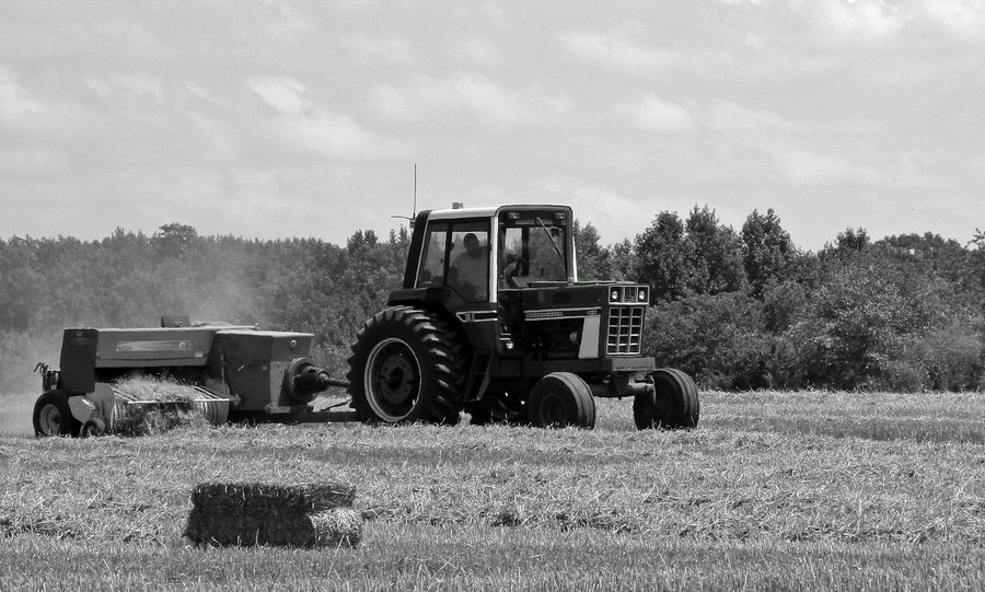 Harvesting the hay Angle Black And White Blue Clear Sky Collecting Colors Cutting Dust Up Field Harvest Hay Hill Horizon Image Of Landscape OpenEdit Pastel Power Photo Of Picture Of Sky Trator Trees Vew White Wide Open Spaces
