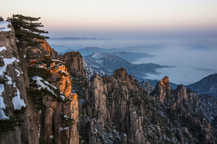 Trees growing on rocky mountains, huangshan, anhui, china