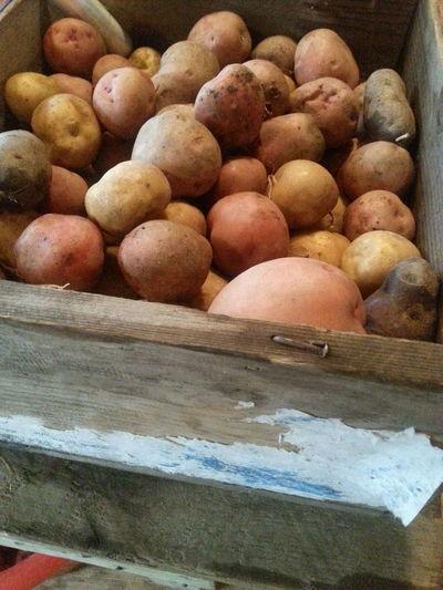 Farmer's market Potatoes, Organic, Fresh