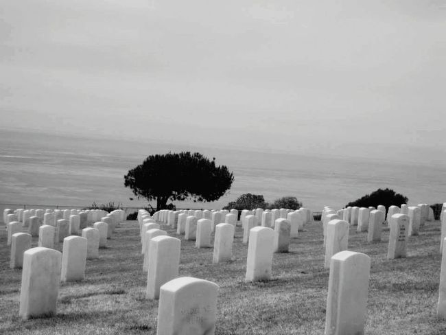 Tombstone Cemetery Memorial Grave Graveyard The Past Gravestone War Day Cross Grass Outdoors Tranquility No People Sea Tree Nature Military Sky