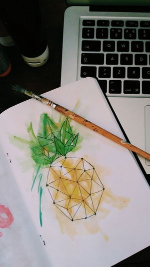 Laptop Indoors  High Angle View Wireless Technology Technology No People Day Close-up Pineapple Draw