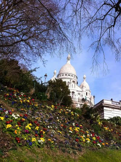 Sacre Coeur Basilica, Paris Montmartre. Landmark Building Architecture Church Churches Outdoors Park City Tourism Tourist Sacre Coeur Paris France Montmartre Montmartre, Paris Sacré Coeur, Paris Cityscapes IPhone Photography Iphonephotography Mobile Photography Mobilephotography Monument Outdoor Photography France Photos
