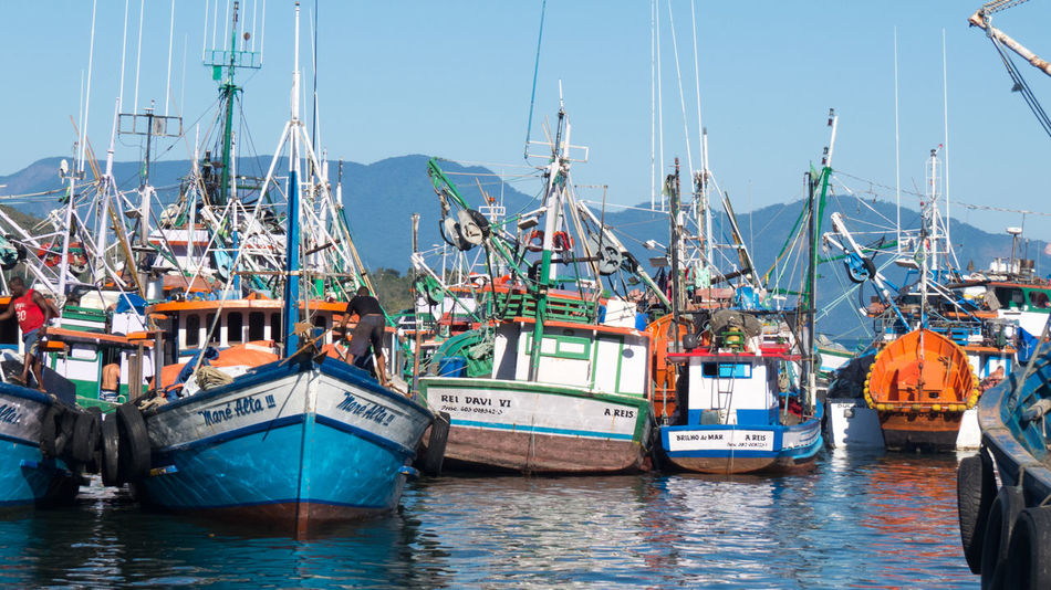 Wood Fishing Boats Clear Sky Fishing Boat Fishing Industry Harbor Moored Nautical Vessel Port Sea Trawler Boats Trawlers Water Wood Boat