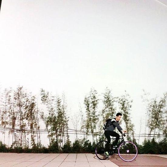 細細妹話預留一大片牆比我cut相,仲話影得好有藝術感喎~~點睇先🙈🙈🙈 Bike Bikelife Fixedgear Fixedgears Fixedgearbike 紫杉醇 紫杉