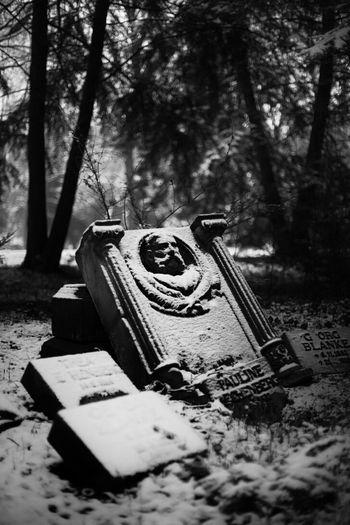 Graveyard Blackandwhite Wintertime