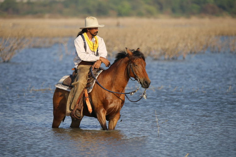 horse, travel, adventure, cowboy, western, horseback riding, horse riding, wanderlust, globetrotter, lifestyle Ride Riding Hat Horseback Riding Vertebrate Pets Activity Water Livestock Animal Animal Wildlife One Animal Horse One Person Real People Animal Themes Mammal Domestic Domestic Animals