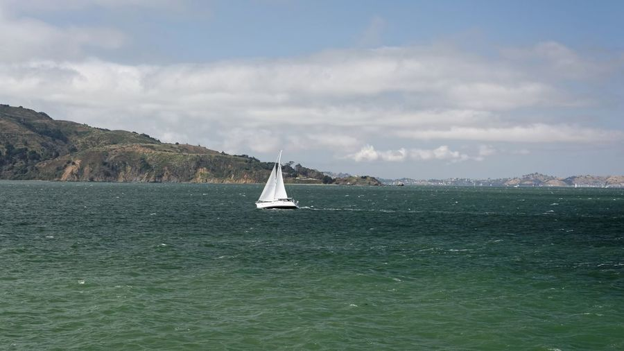 Sailing in San Francisco bay 🇺🇸 California Travel Photography USAtrip Beauty In Nature Cloud - Sky Day Horizon Over Water Landscape Mode Of Transport Nature Nautical Vessel No People Outdoors Sailboat Sailing San Francisco Bay Scenery Scenics Sea Sky Transportation Water Waterfront California Dreamin Sailing Boat Bay Of Water Idyllic Seascape Calm Ocean