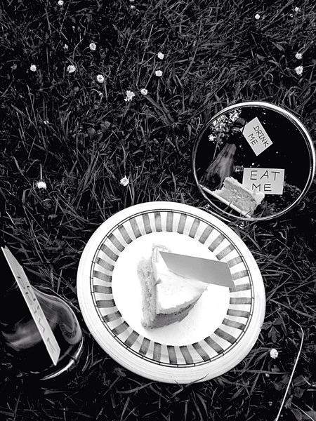 Through the Looking Glass eat me drink me Mirror for the bnw_friday_eyeemchallenge Getting Creative getting inspired literature black and white bnw Ali Through The Looking Glass Eat Me Drink Me Mirror Bnw_friday_eyeemchallenge Getting Creative Getting Inspired Literature Black And White Bnw Food And Drink Drink Plant Outdoors Grass